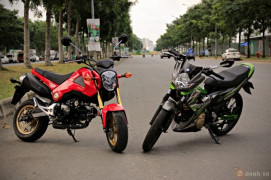 So sánh Honda MSX 125 và Suzuki Raider 150