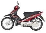 Suzuki Smash Revo: Vẻ Đẹp Đơn Giản