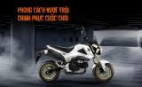 Đánh giá Honda MSX 125 - Giá xe và chi tiết hình ảnh