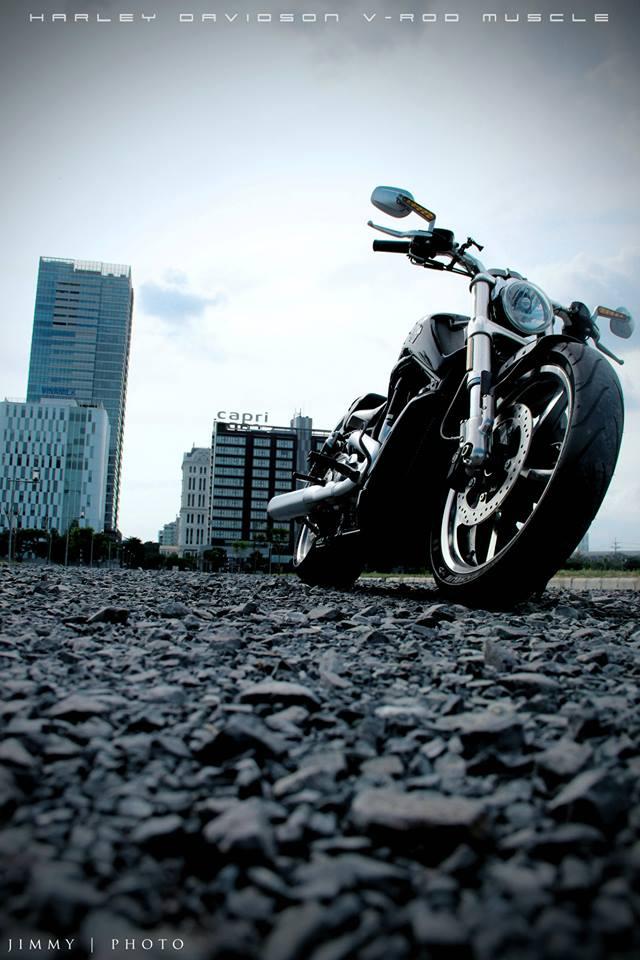 V-Rod Muscle 2014 - Mẫu xe cơ bắp Mỹ của Harley - 84726