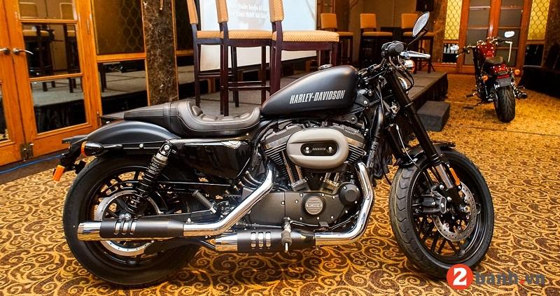 Harley davidson roadster - 1